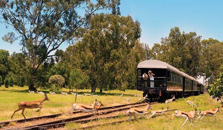 rovos luxury rail