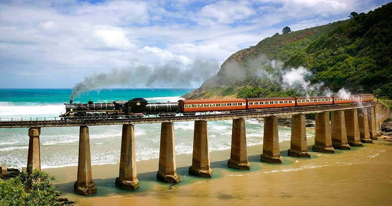 Wilderness train