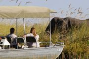 Chobe Water Safari